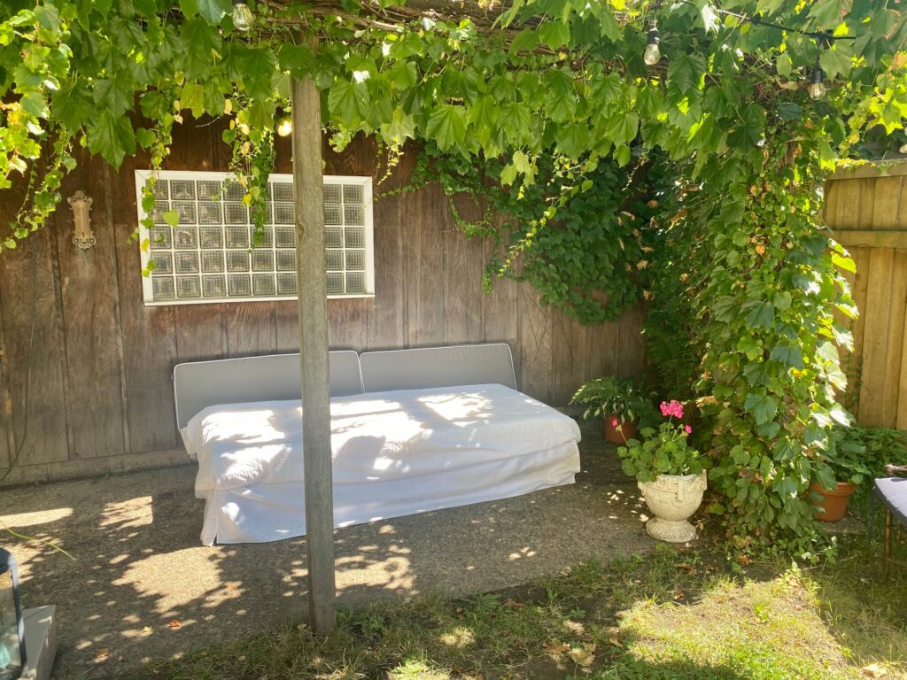 Daybed under vine covered pergolan